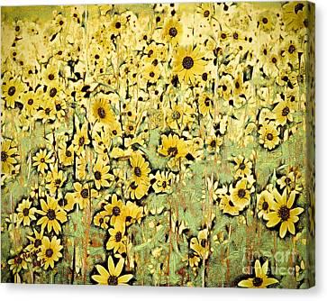 Flagstaff Canvas Print - Sunshine by Arne Hansen