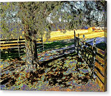 Canvas Print featuring the photograph Sunshine Down On The Farm by Diane Miller