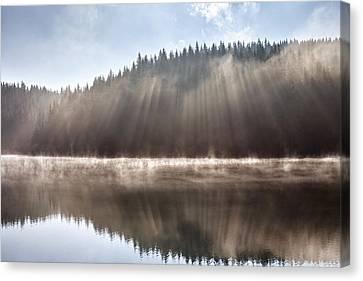 Sunshine Lake Canvas Print by Evgeni Dinev