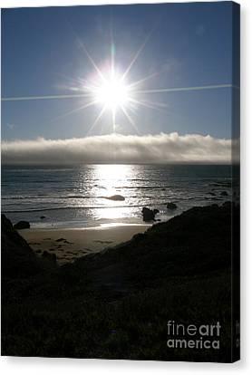 Sunstar Canvas Print by Bev Conover