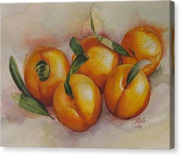 Sunstruck Peaches Canvas Print by Tracy Male