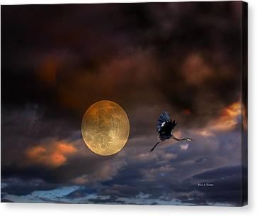 Super Moon 2013 Canvas Print by Angela A Stanton