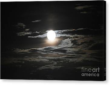 Super Moon 2013 Canvas Print