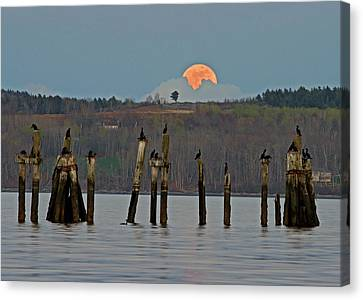 Canvas Print featuring the photograph Super Moon  by Barbara West