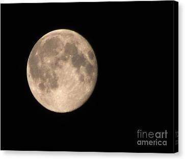 Canvas Print featuring the photograph Super Moon by David Millenheft