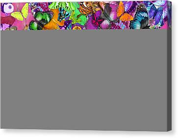 Super Rainbow Butterflies Canvas Print by Alixandra Mullins