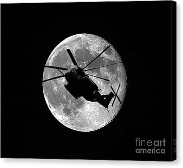 Super Stallion Silhouette Canvas Print by Al Powell Photography USA