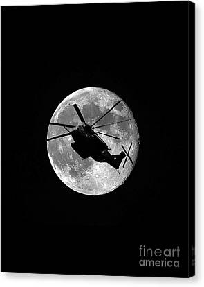 Super Stallion Silhouette Vertical Canvas Print by Al Powell Photography USA