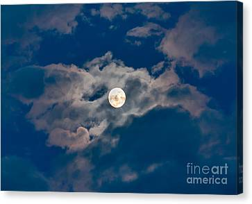 Supermoon Canvas Print by Robert Bales