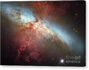 Supernova In Nearby Galaxy M82 Canvas Print