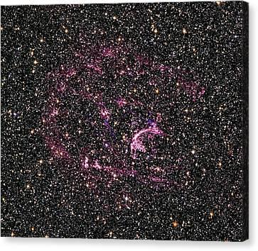 Supernova Remnant N132d Canvas Print