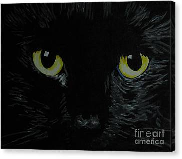 Superstitious Eyes Canvas Print by Nancie Johnson