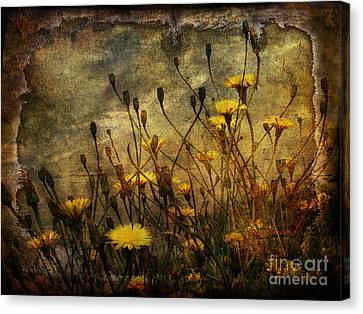 Surf And Yellow Flowers Canvas Print by Jim Wright