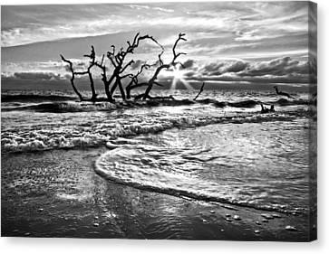 Jeckll Island Canvas Print - Surf At Driftwood Beach by Debra and Dave Vanderlaan