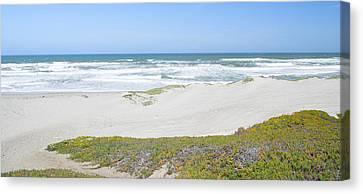 Surf Beach Lompoc California 4 Canvas Print by Barbara Snyder