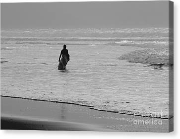 Surfer In The Mist Canvas Print by Terri Waters