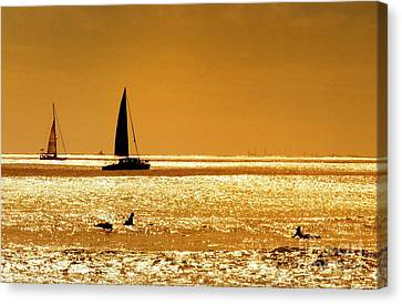 Canvas Print - Surfers And Sailboats by Kristine Merc