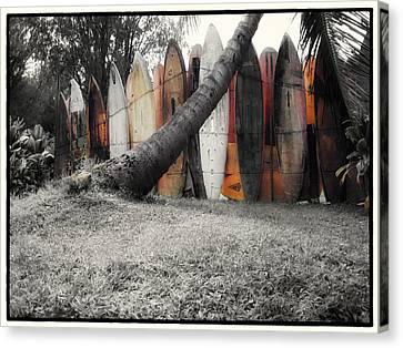 Surfs Up Canvas Print by Linda Dunn