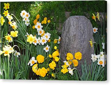Canvas Print featuring the photograph Surounded By Beauty by Sheila Byers
