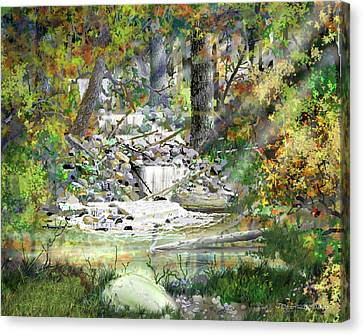 Canvas Print featuring the drawing Surprise by Jim Hubbard