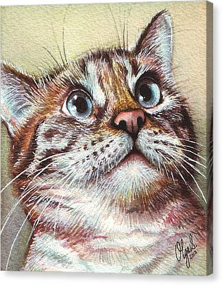 Watercolor Pet Portraits Canvas Print - Surprised Kitty by Olga Shvartsur