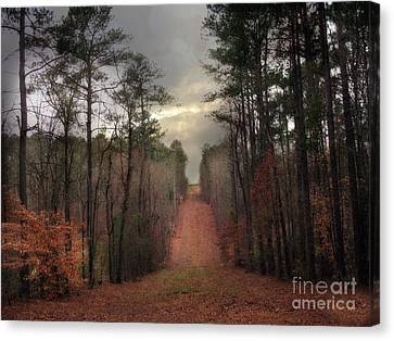 Nature Scene Canvas Print - Surreal Autumn Fall South Carolina Tree Landscape by Kathy Fornal