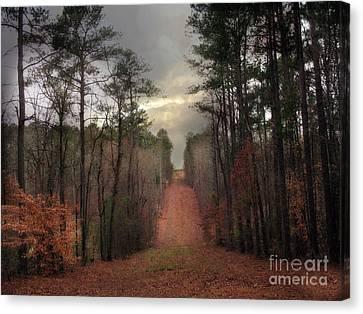 Surreal Autumn Fall South Carolina Tree Landscape Canvas Print