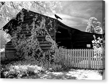 Surreal Black And White Infrared Gothic Nature Barn Landscape With Black Raven Canvas Print by Kathy Fornal