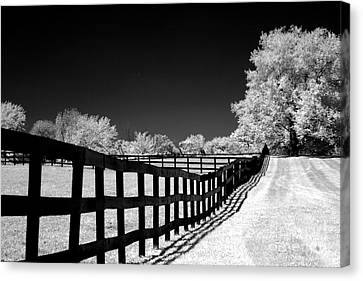 Surreal Black White Infrared Fence Landscape Canvas Print by Kathy Fornal