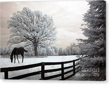 Surreal Dreamy Infrared Trees - Fantasy Infrared Horse Nature Landscape With Fence Post Canvas Print