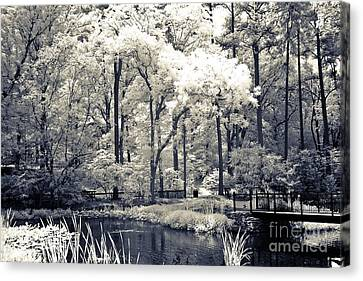 Surreal Dreamy Infrared Trees Nature Landscape Canvas Print