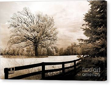 Surreal Infrared Sepia Nature Canvas Print - Surreal Dreamy Infrared Trees Nature Sepia Ethereal Landscape With Fence by Kathy Fornal
