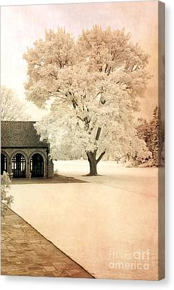 Surreal Ethereal Infrared Sepia Nature Landscape Canvas Print by Kathy Fornal