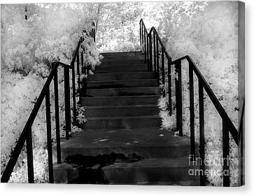 Surreal Fantasy Black And White Stairs Nature  Canvas Print by Kathy Fornal