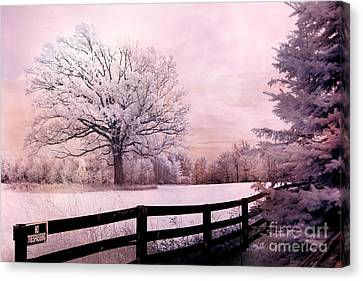 Surreal Fantasy Dreamy Pink Infrared Trees And Nature Landscape  Canvas Print by Kathy Fornal