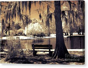 Surreal Infrared Sepia Nature Canvas Print - Surreal Fantasy Ethereal Infrared Sepia Park Nature Landscape  by Kathy Fornal