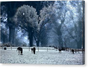 Surreal Fantasy Fairytale Infrared Nature Horses Blue Landscape Canvas Print by Kathy Fornal