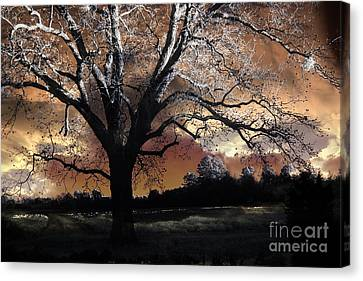 Surreal Fantasy Gothic Trees Nature Sunset Canvas Print by Kathy Fornal