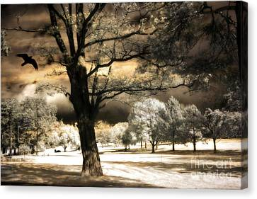 Surreal Infrared Sepia Nature Canvas Print - Surreal Fantasy Infrared Trees Raven Landscape  by Kathy Fornal