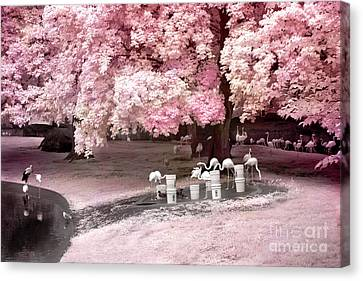 Surreal Fantasy Pink Flamingo Pond Infrared Nature Canvas Print