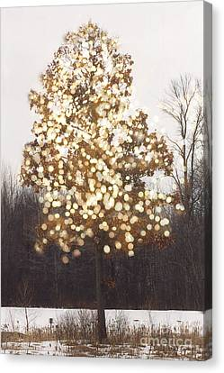 Surreal Fantasy Tree Nature Sparkling Lights Canvas Print by Kathy Fornal