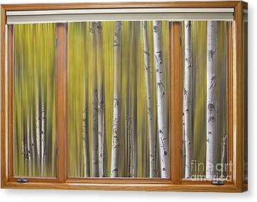 Surreal Forest Dream Classic Wood Window View  Canvas Print by James BO  Insogna