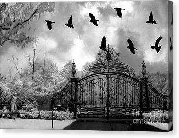 Surreal Gothic Black And White Gate With Flying Ravens  Canvas Print by Kathy Fornal