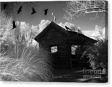 Surreal Gothic Black And White Infrared Nature Haunting Old House With Flying Ravens Canvas Print by Kathy Fornal