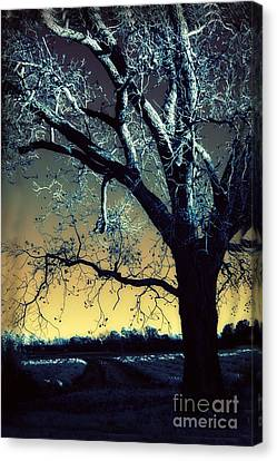 Surreal Gothic Fantasy Blue Tree Nature Sunset  Canvas Print by Kathy Fornal
