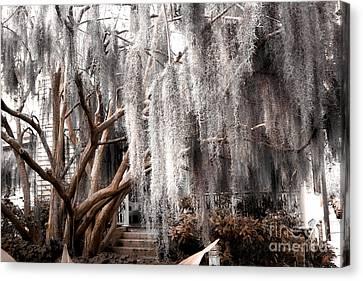 Surreal Gothic Savannah House Spanish Moss Hanging Trees - Savannah Sepia Brown Moss Trees Canvas Print