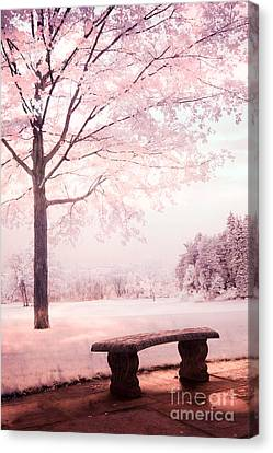 Surreal Infrared Dreamy Pink And White Park Bench Tree Nature Landscape Canvas Print by Kathy Fornal