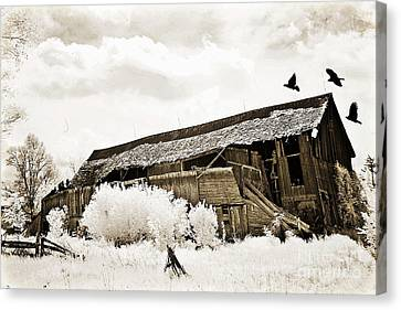Surreal Infrared Sepia Vintage Crumbling Barn With Flying Ravens - The Passage Of Time Canvas Print by Kathy Fornal