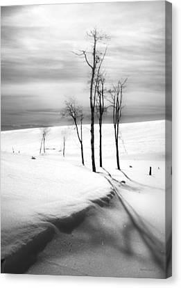 Surreal Snowscape 2 Canvas Print by Theresa Tahara