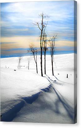 Surreal Snowscape Canvas Print by Theresa Tahara